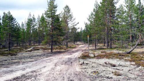 Rovaniemi-Pohtimolampi maastopyöräillen