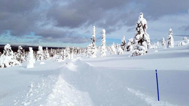 Talvipyöräily Ylläs